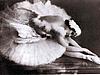 О балете: