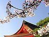 Удивительная Япония: интересные факты