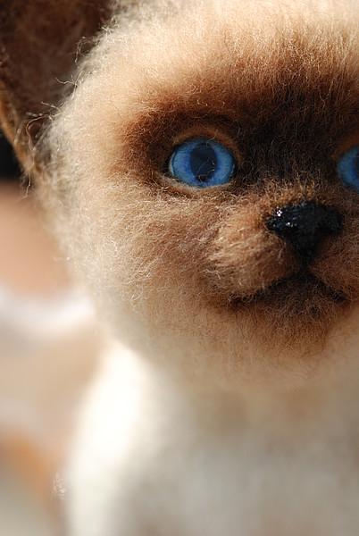 мастер-класс, мастер-класс по валянию, валяние, котёнок из шерсти, валяная игрушка