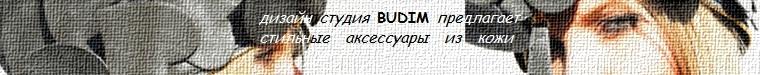 Ira BUDIM