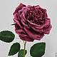 Цветы ручной работы. Роза пионовидная. Фом эва. ЦВЕТЫмания (FLOWERmania). Интернет-магазин Ярмарка Мастеров. Розы, цветок, фоамиран
