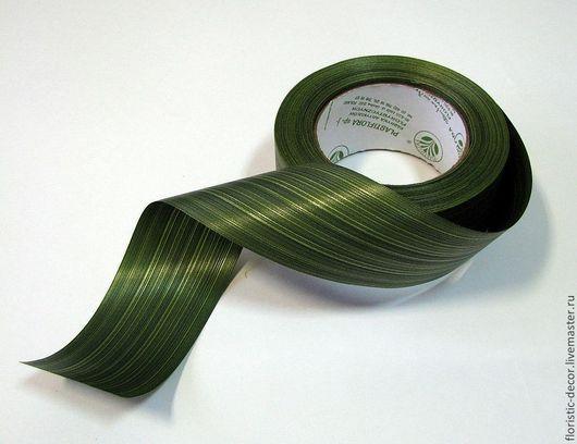 Материалы для флористики ручной работы. Ярмарка Мастеров - ручная работа. Купить Лента аспидистра зеленая (разная ширина). Handmade.