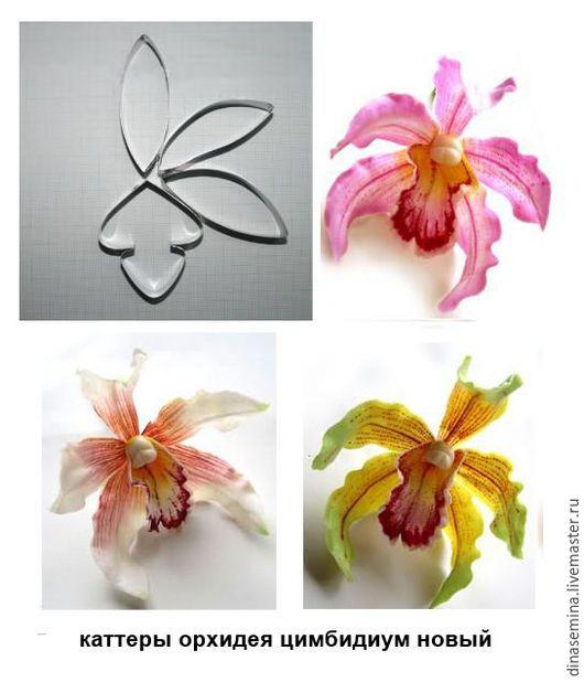 Каттеры орхидея цимбидиум  insigne: M средний — 240 руб. (лепестки 5.4х1.6 см; 5.5х2 см; 5.5х2 см, губа 4.5х3.8 см)  L большой — 250 руб. (лепестки 8х2.5 см; 7.4х2.2 см; 7.8х2 см, губа 5.2х6.3 см
