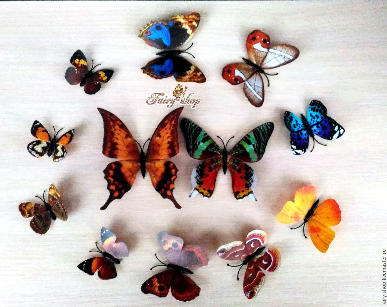 Декоративная бабочка Правильный мир 48