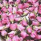 Материалы для косметики ручной работы. Ярмарка Мастеров - ручная работа. Купить Гидролат Розы. Handmade. Комбинированный, тоник для лица