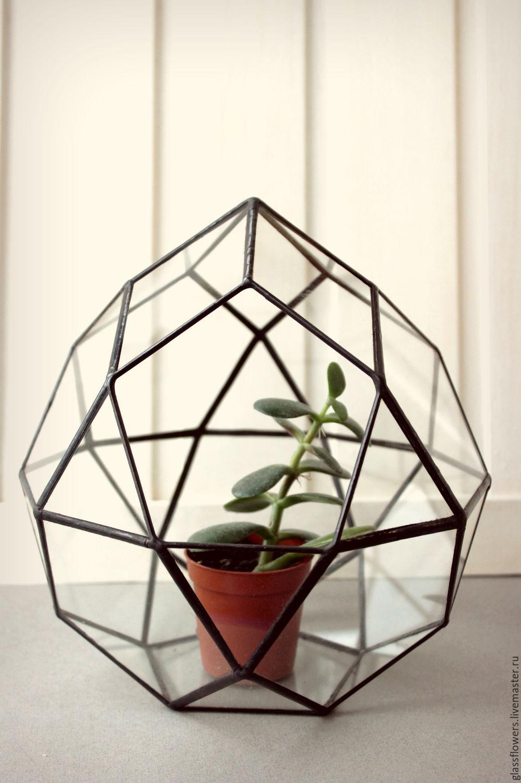 Florarium. Geométrico florarium Huevo. Florero para florariuma. El vidrio, Pots1, St. Petersburg,  Фото №1