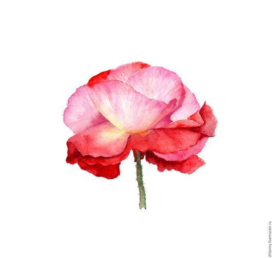 `Фламенко` акварель. Автор Желтышева Татьяна