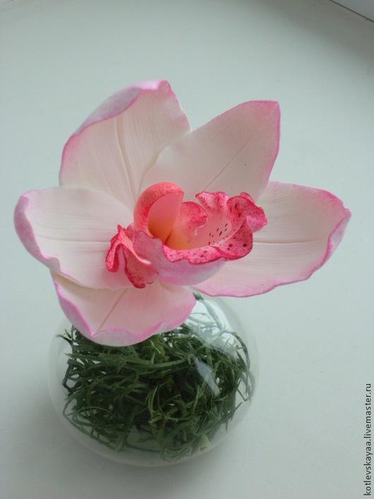 Цветы ручной работы. Ярмарка Мастеров - ручная работа. Купить Орхидея цимбидиум на коротком стебельке. Handmade. Белый, decoclay
