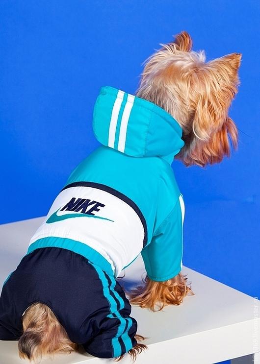 """Одежда для собак, ручной работы. Ярмарка Мастеров - ручная работа. Купить Комбинезон спортивный """"NIKE"""". Handmade. Одежда для собак"""