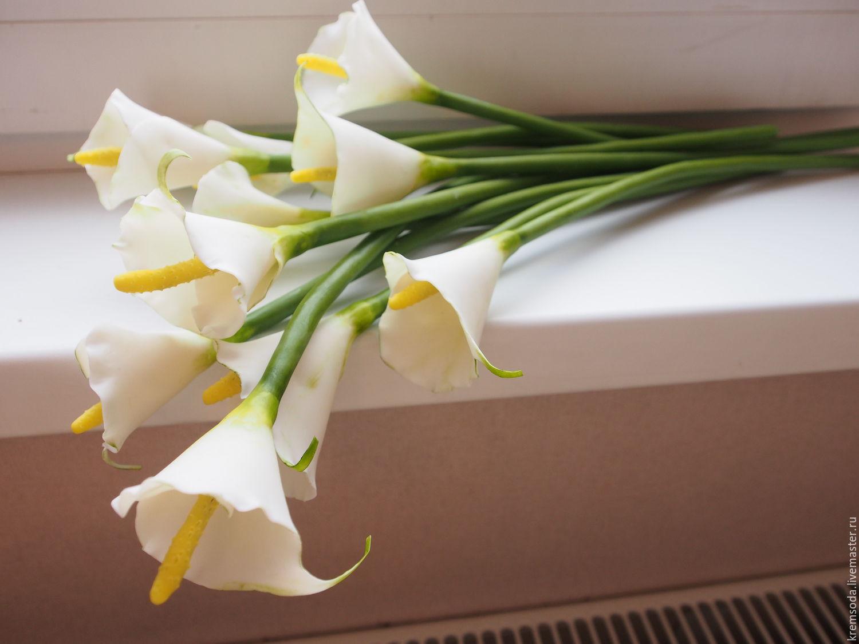 Каллы купить цветы