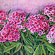 Bright Phlox oil painting, the bright blossoms of Phlox, Pictures, Azov, Фото №1