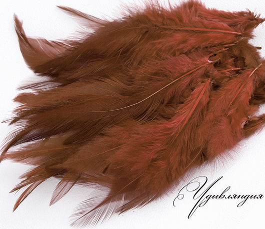 Другие виды рукоделия ручной работы. Ярмарка Мастеров - ручная работа. Купить Перо фазана натуральное, окрашенное №114.. Handmade.