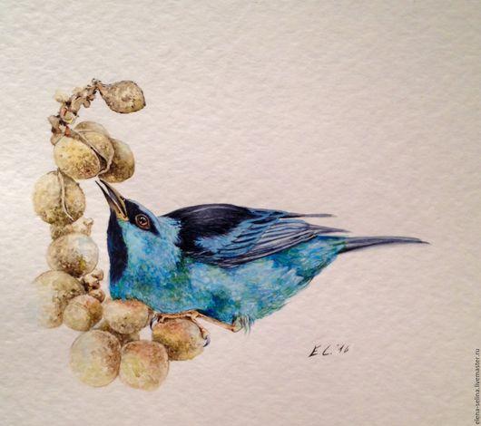 Животные ручной работы. Ярмарка Мастеров - ручная работа. Купить Синяя Птица Счастья Дакнис, акварель. Handmade. Синий, акварель