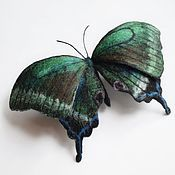 Украшения ручной работы. Ярмарка Мастеров - ручная работа Брошь бабочка Маака. Handmade.