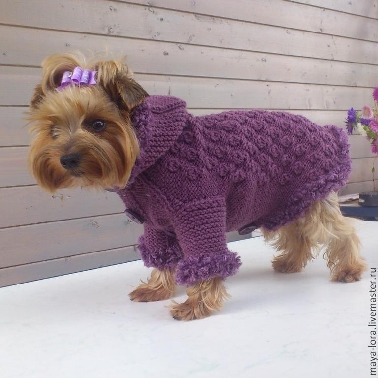 одежда для собак вязаная курточка мечта купить в интернет