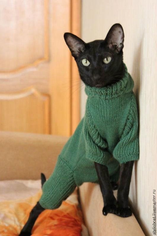 Одежда для кошек, ручной работы. Ярмарка Мастеров - ручная работа. Купить Одежда для кошек. Handmade. Болотный, кашемир 100%