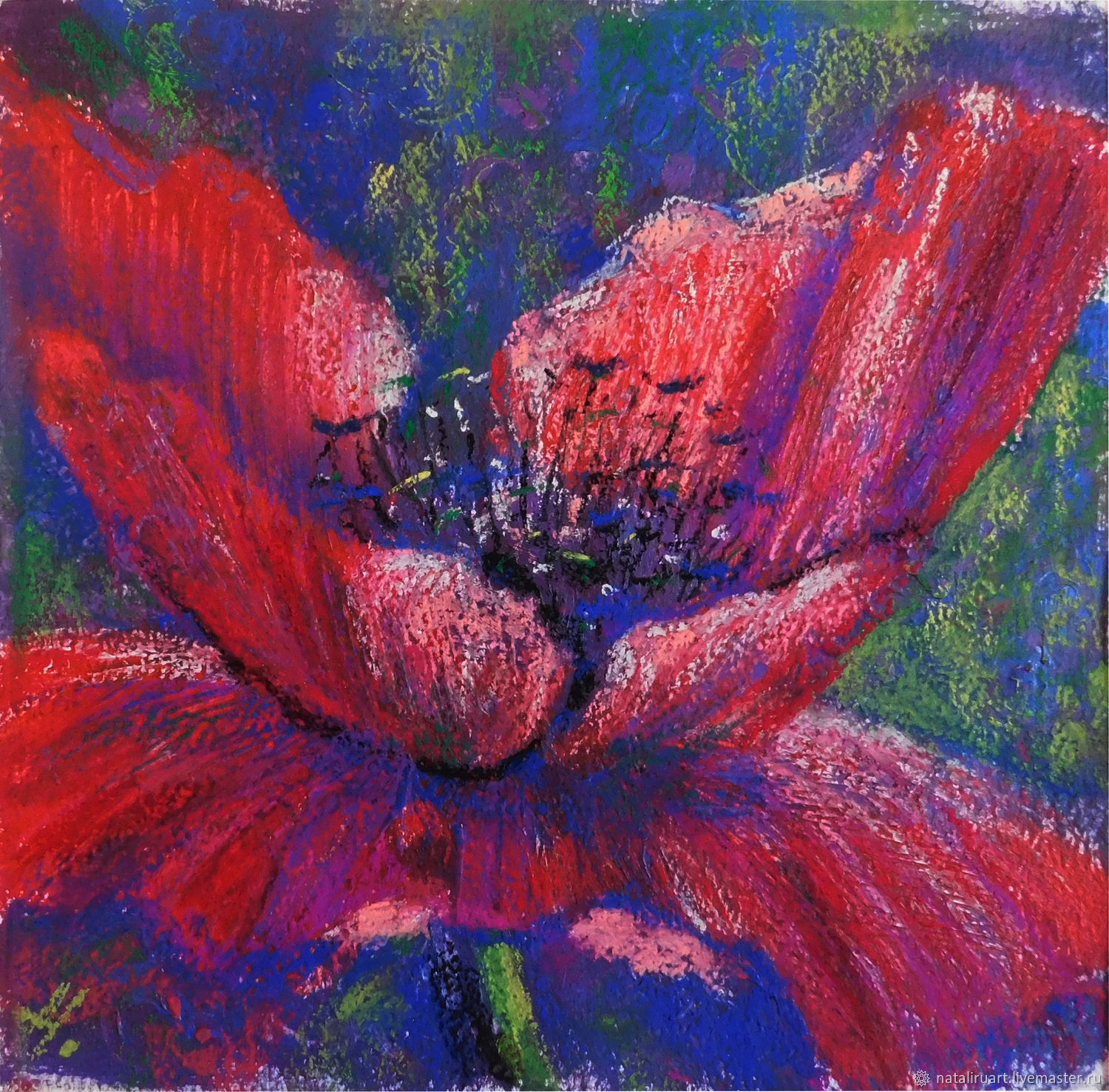 Painting Poppies. Flowers, Pictures, St. Petersburg,  Фото №1