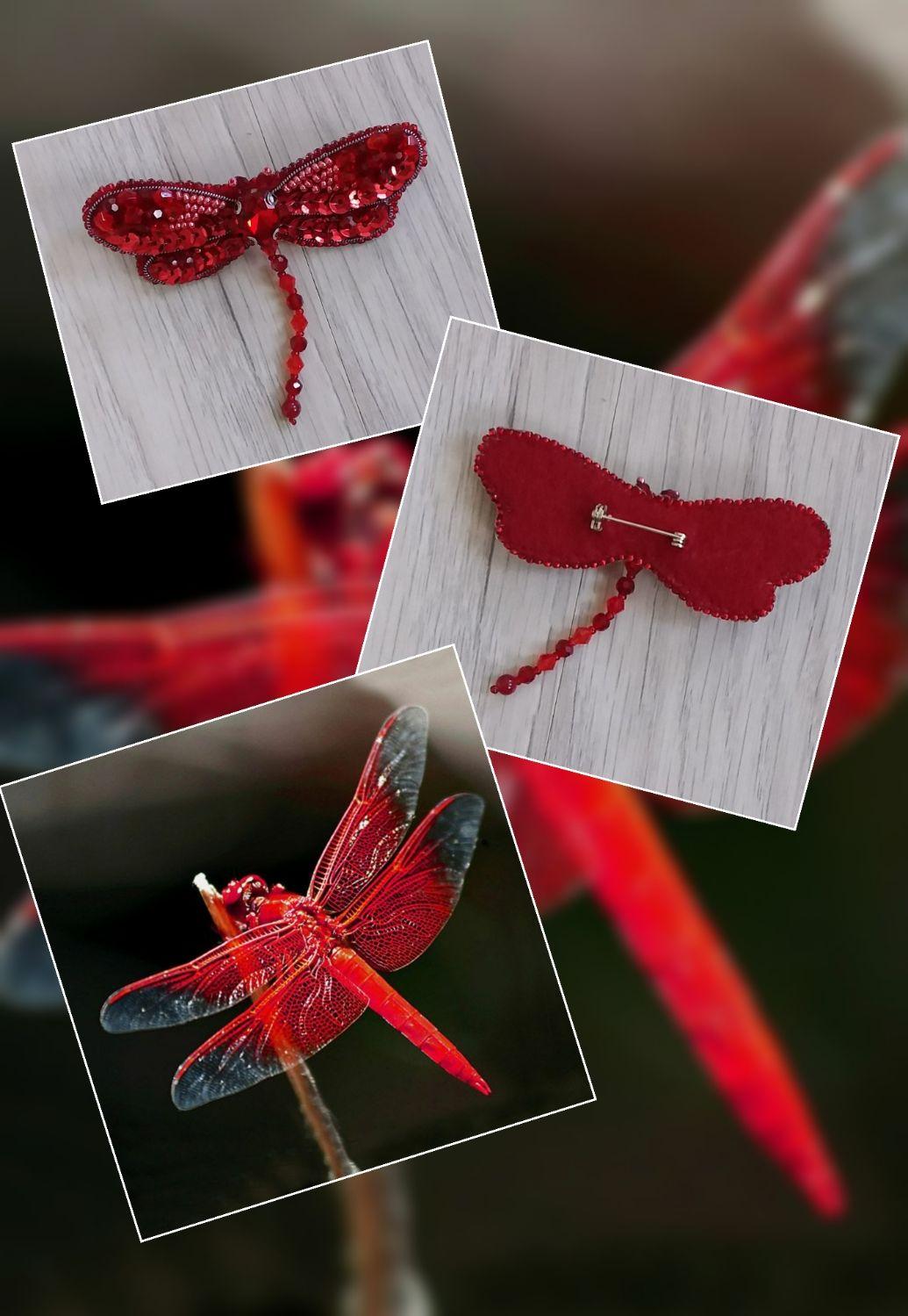 Красная стрекоза. Leucorrhinia rubicunda, Брошь-булавка, Нижний Новгород,  Фото №1
