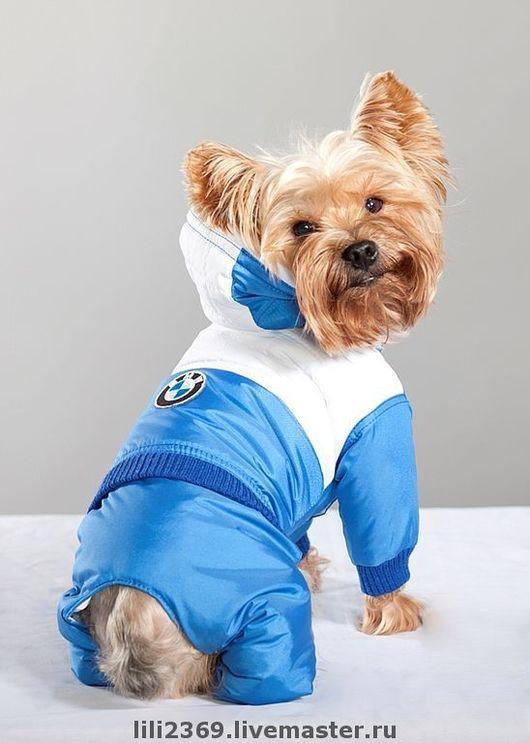 Одежда для собак, ручной работы. Ярмарка Мастеров - ручная работа. Купить Комбинезон для собак BMW. Handmade. Синий, чихуахуа, флис