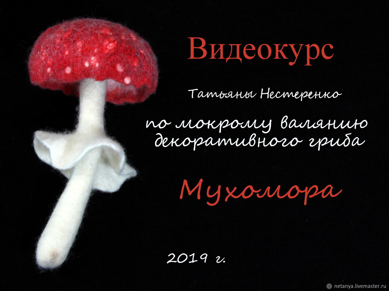 Видеокурс по мокрому валянию гриба Мухомора, Материалы для валяния, Нижний Новгород,  Фото №1