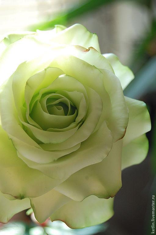 """Цветы ручной работы. Ярмарка Мастеров - ручная работа. Купить Роза """" Green Tea """". Handmade. Салатовый"""