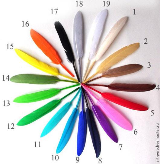 Другие виды рукоделия ручной работы. Ярмарка Мастеров - ручная работа. Купить Перья гуся 8-14 см., 10 шт.. Handmade.