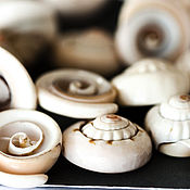 Материалы для творчества handmade. Livemaster - original item 1868_10_ Natural pink seashell, Sea shell bead. Handmade.