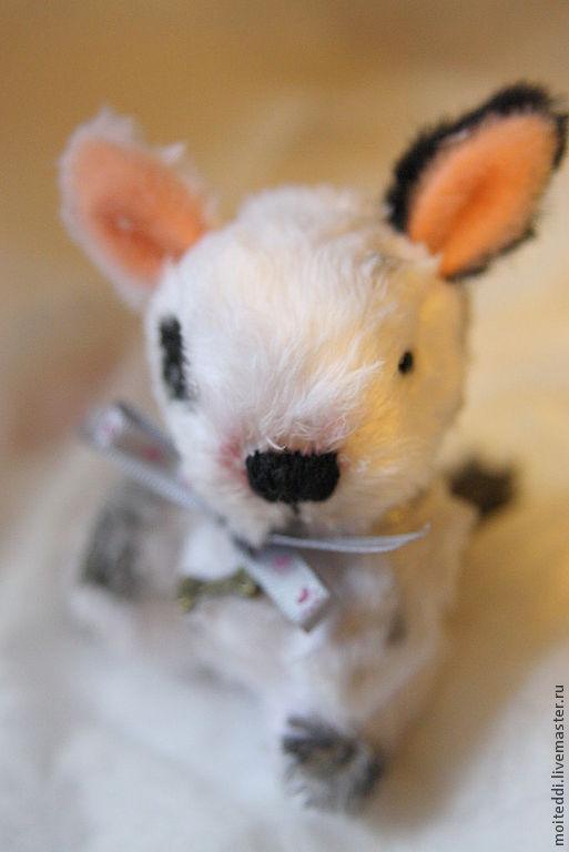 Мишки Тедди ручной работы. Ярмарка Мастеров - ручная работа. Купить щенок шалун. Handmade. Чёрно-белый, собака, диски