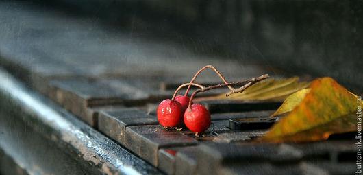 Фотокартины ручной работы. Ярмарка Мастеров - ручная работа. Купить Фотокартина Старый рояль. Handmade. Черный, осень, музыка
