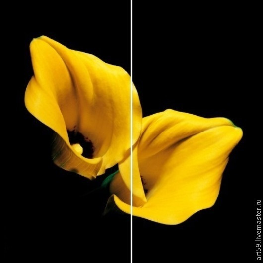 """Картины цветов ручной работы. Ярмарка Мастеров - ручная работа. Купить диптих """" Желто-черный"""". Handmade. Желтый"""