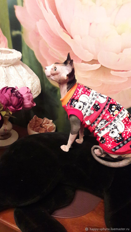 """Одежда для кошек """"Майка Рождественская сказка"""", Одежда для питомцев, Бийск,  Фото №1"""