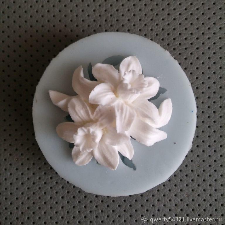 Молд № 4 Нарцисс двойной, Молды, Балашиха,  Фото №1