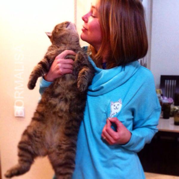 Good cat/ Bad cat, Jumpers, Ivanovo,  Фото №1