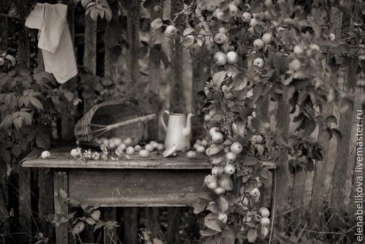 Фотокартины ручной работы. Ярмарка Мастеров - ручная работа. Купить Осеннее. Handmade. Серебряный, оформление интерьера, фотография, картина для интерьера