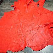 Материалы для творчества handmade. Livemaster - original item Ostrich leather, soft dressing, in bright red. Handmade.
