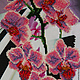 """Картины цветов ручной работы. Ярмарка Мастеров - ручная работа. Купить Ветка орхидеи """"Фаленопсис"""". Handmade. Вышивка бисером"""