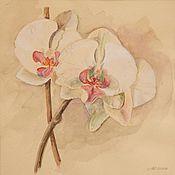 """Картины и панно ручной работы. Ярмарка Мастеров - ручная работа """"Орхидея"""" акварель. Handmade."""