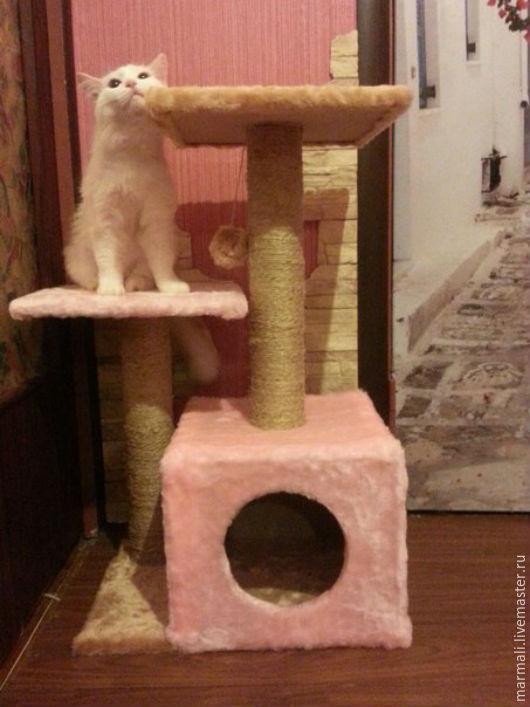 Аксессуары для кошек, ручной работы. Ярмарка Мастеров - ручная работа. Купить КОГТЕТОЧКА  9. Handmade. Комбинированный, домик для кошки, кошка