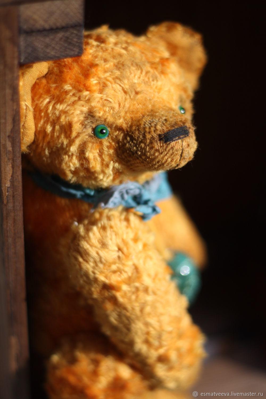 Riccio, Teddy Bears, Moscow,  Фото №1