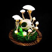 Для дома и интерьера handmade. Livemaster - original item Night light with mushrooms and a cat`s skull. Handmade.