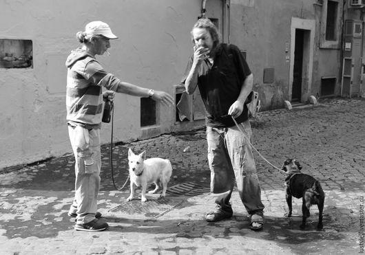 LuStyle. Авторская фоторабота `Старые друзья`, Рим, 2013 г.
