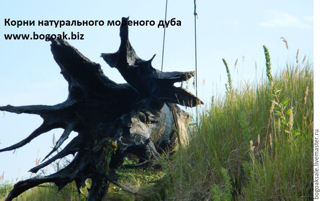 Уникальные корни натурального мореного дуба.