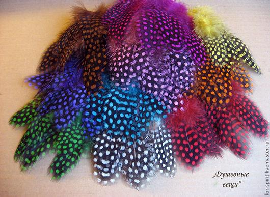 Другие виды рукоделия ручной работы. Ярмарка Мастеров - ручная работа. Купить (10 шт) Перья цесарки (11 цветов). Handmade.