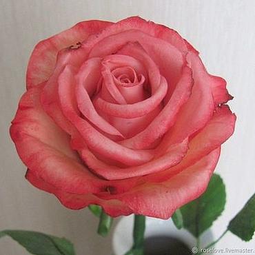 Цветы и флористика ручной работы. Ярмарка Мастеров - ручная работа Роза ручной работы из полимерной глины. Handmade.