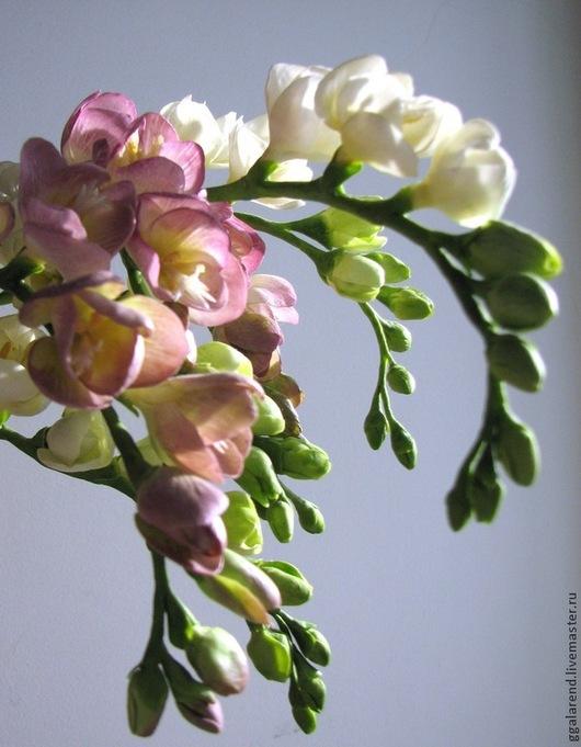 Цветы ручной работы. Ярмарка Мастеров - ручная работа. Купить Фрезия из полимерной глины. Handmade. Белый, цветы из полимерной глины