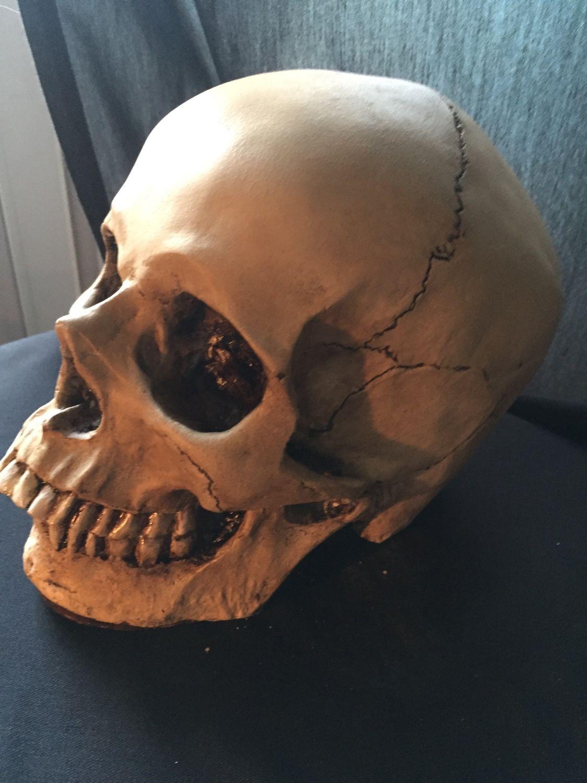 маленькие формы норм черепа человека фото было разрешено начать