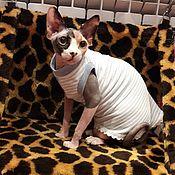 """Одежда для питомцев ручной работы. Ярмарка Мастеров - ручная работа Одежда для кошек """"Леди"""". Handmade."""