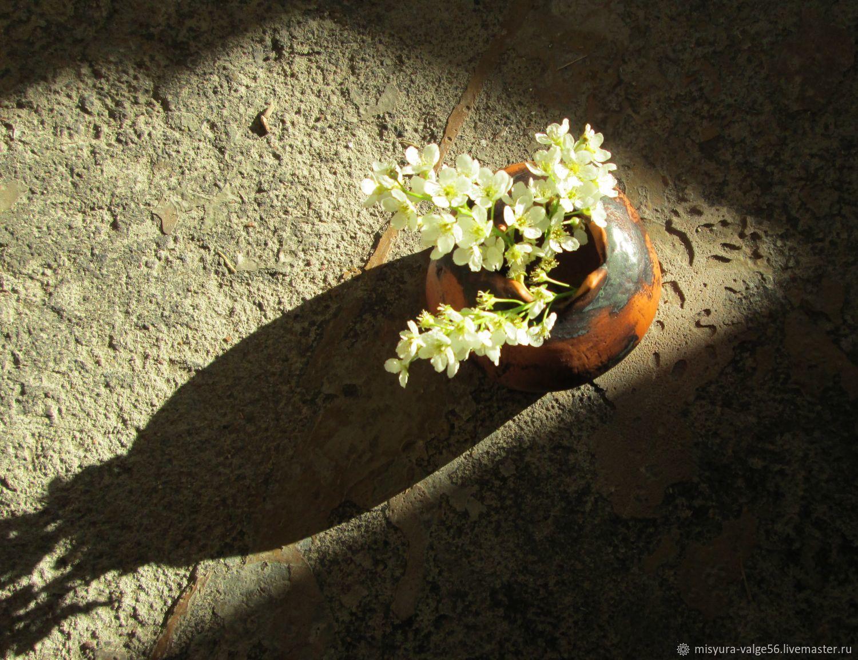 Ваза из керамики. Голубая глина, чёрная глазурь. Тёмный гранат, Вазы, Санкт-Петербург,  Фото №1