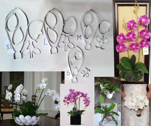 Каттеры орхидея фаленопсис с листьями