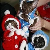 Для домашних животных, ручной работы. Ярмарка Мастеров - ручная работа Праздничные костюмы для собачек и кошечек. Handmade.